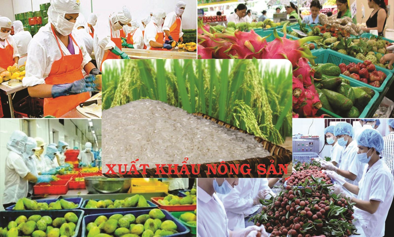 Tình hình xuất khẩu hàng nông, lâm, thủy sản 4 tháng đầu năm 2020